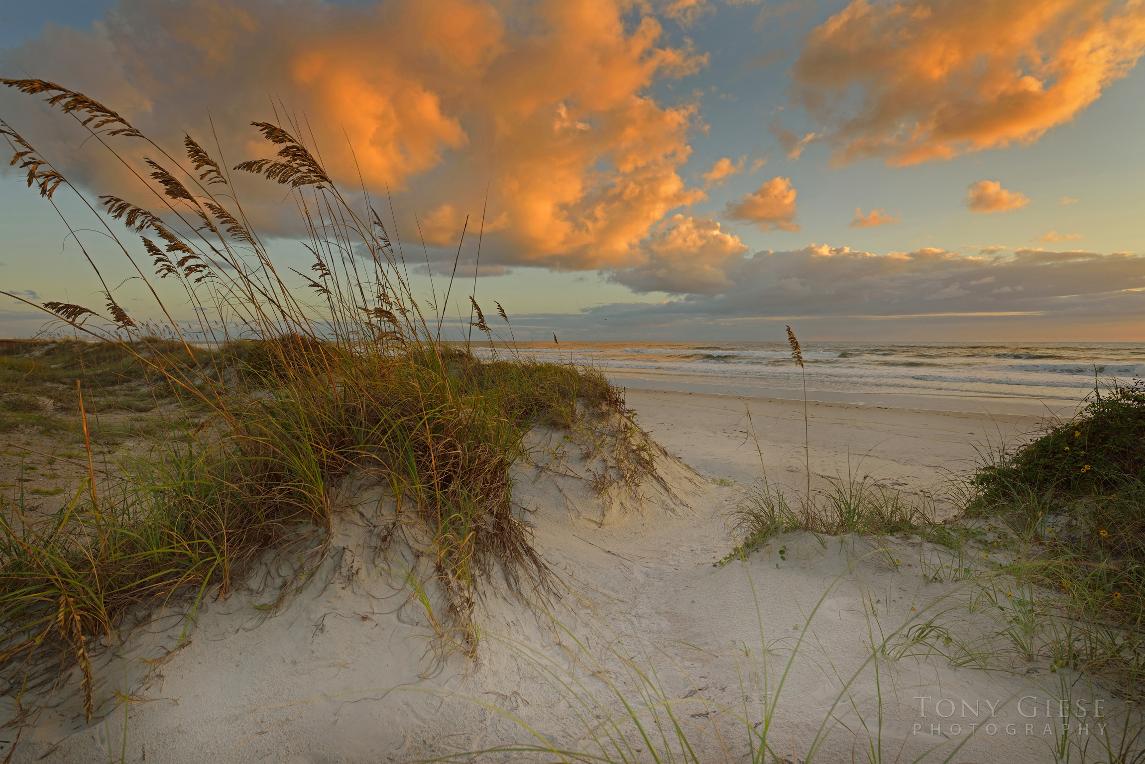 Golden clouds near sunrise, Ponce Inlet, Florida. Lighthouse point park photo by Tony Giese Photography.