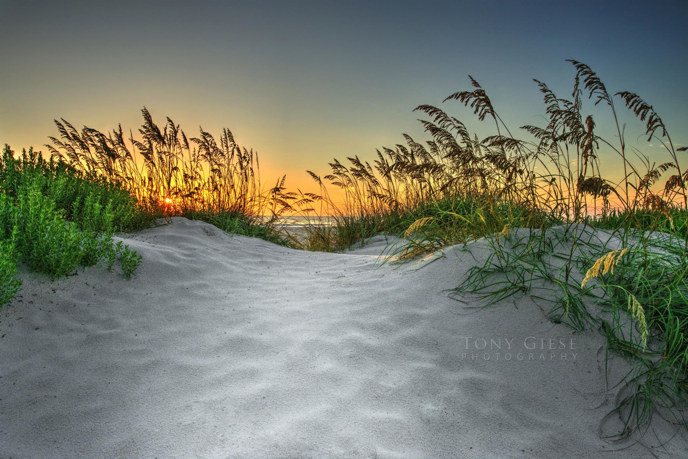 Daytona Beach Photography Tony Giese Professional Photographer