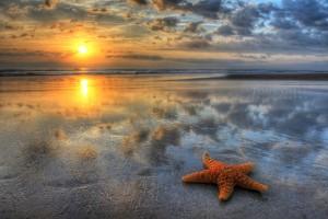 sunrisephotographerdaytonabeachfl