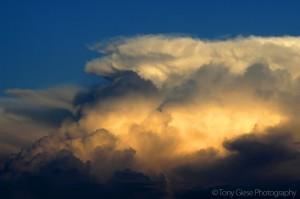 thunderheadsfl